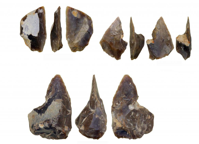 Archaeologists discovered a flintstone workshop of Neanderthals in the southern Poland; it is approx. 60,000 years old - image Zrzut%20ekranu%202019-03-12%20o%2009.32.27 on https://alldesingideas.com