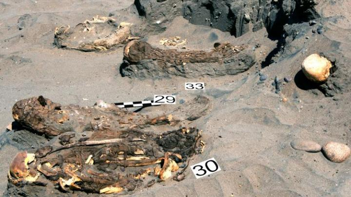 Wrocław archaeologists discovered burial site of unknown culture in Peru