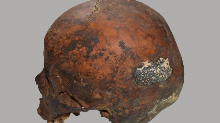 Skull of a boy from Ampato volcano, burned by lightning. Photo by D. Socha
