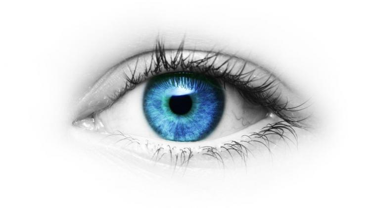 People With Blue Or Grey Eyes Are At Greater Risk Of Vitiland Melanoma Researchers Have Found The Relationship Between Eye Colour And Susceptibility