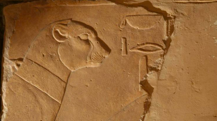 Partially preserved secretary bird from the Portico of Punt. Temple of Hatshepsut at Deir el-Bahari. Photo by Jadwiga Iwaszczuk.