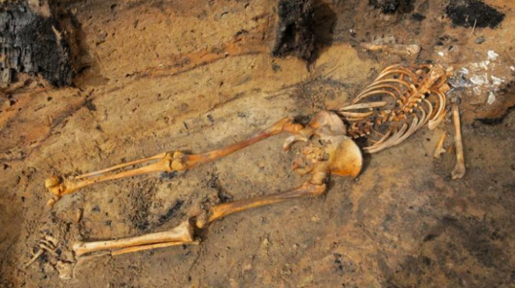 "Skeleton found during archaeological excavations in the 14th century settlement near Barczewko, called the ""Pompeii of Warmia"". Photo: PAP/Tomasz Waszczuk 27.08.2018"