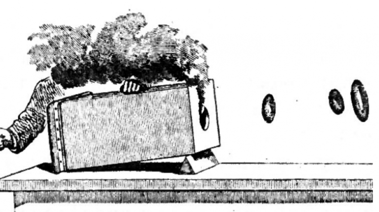 "The drawing illustrating Tait's experiment and visualization of the motion of air around a smoke ring (Peter Tait, ""Lectures on Some Recent Advances in Physical Science"", MacMillan & Co., London, 1876)"