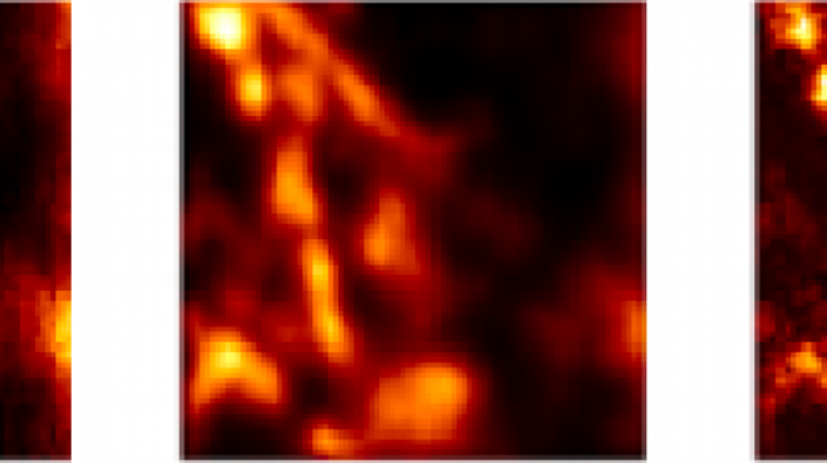 "Biological sample: microtubules labelled with quantum dots; from left, the image obtained: in a standard microscope, with the ISM method, with the Q-ISM method. Illustration based on the data presented in the supplement to the publication ""Super-resolution enhancement by quantum image scanning microscopy"" in ""Nature Photonics"". (Source: Alexander Krupiński-Ptaszek, Faculty of Physics, University of Warsaw)"