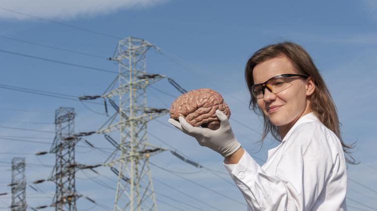 Research conducted at IPC PAS using the new research method enables the early detection of neurotransmitter deficiencies which will help prevent various diseases. Pictured is Magdalena Kundys-Siedlecka, holding a brain. The brain was borrowed from Nencki Institute of Experimental Biology. (Source: IPC PAS, Grzegorz Krzyzewski)