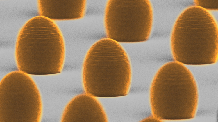 3D printed aspheric microlenses, electron microscope image. The diameter of each lens is 15 micrometres, or about one-fifth of the thickness of a human hair. Thanks to the high efficiency of 3D printing, it is possible to produce hundreds of microlenses on one substrate in a short time. (Credit: Faculty of Physics, University of Warsaw, A. Bogucki and Ł. Zinkiewicz)