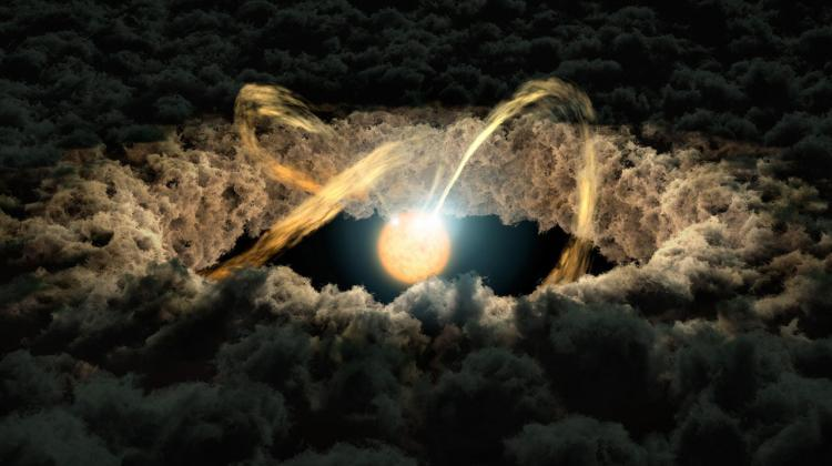 Artist's concept of a protoplanetary disk surrounding a young star. Source: NASA/JPL-Caltech.